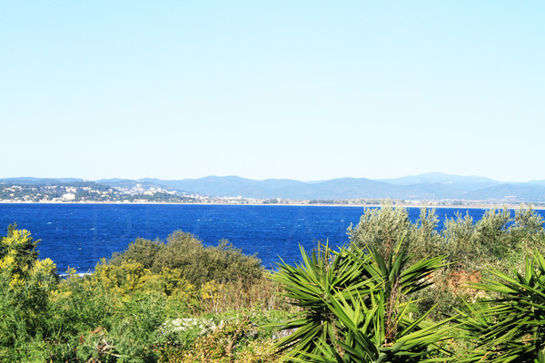 house for sale in Giens in few steps from the sea , house with sea view, 5 bedrooms and pool , var , cote d'azur , sea by walk