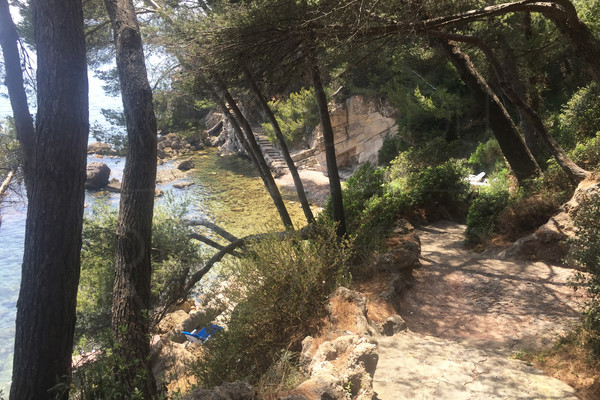 waterfront property for sale / var / cote d'azur/ castle / 2,8 hectares / private creek