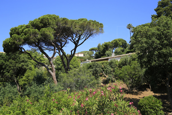 property to sale / var / cote d'azur / 400 from the sea / sea view/ Ability to detach a plot / 4 bedrooms